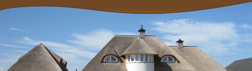 De omgeving van het dak