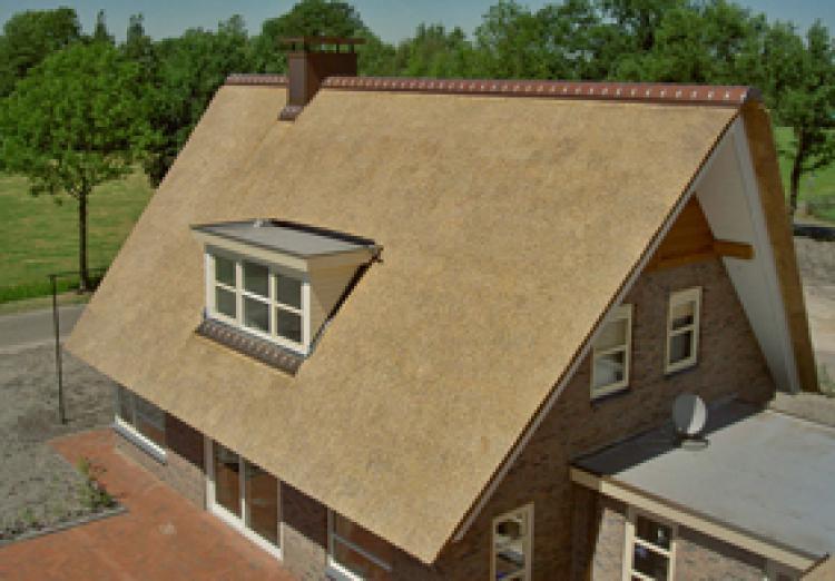 Rieten dak detail dwg