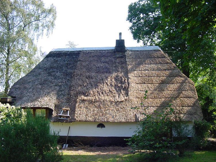 Renovatie van een rieten dak vakfederatie rietdekkers