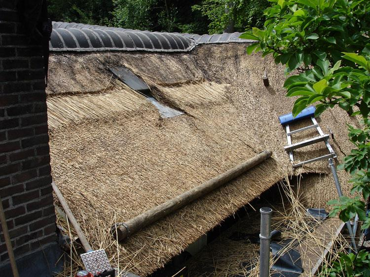 Strandtas Riet Maken : Renovatie van een rieten dak vakfederatie rietdekkers